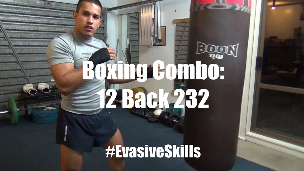 Boxing Combo for Dodging Punches