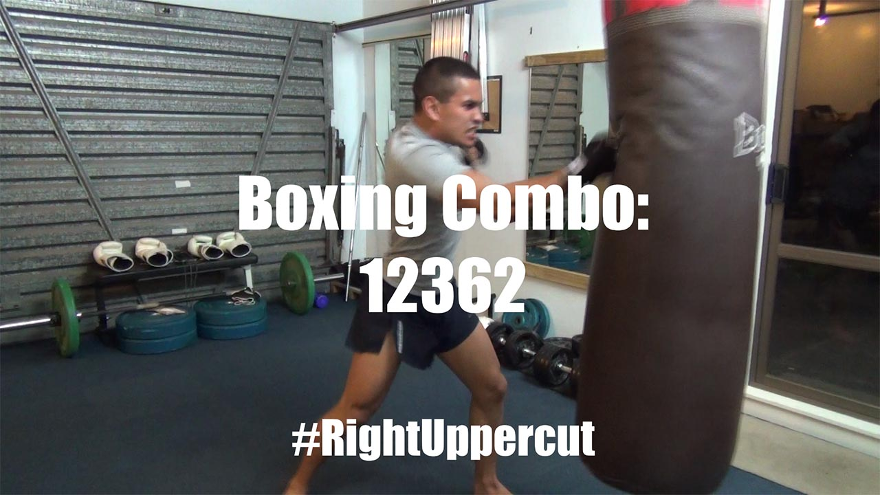 right uppercut boxing combo