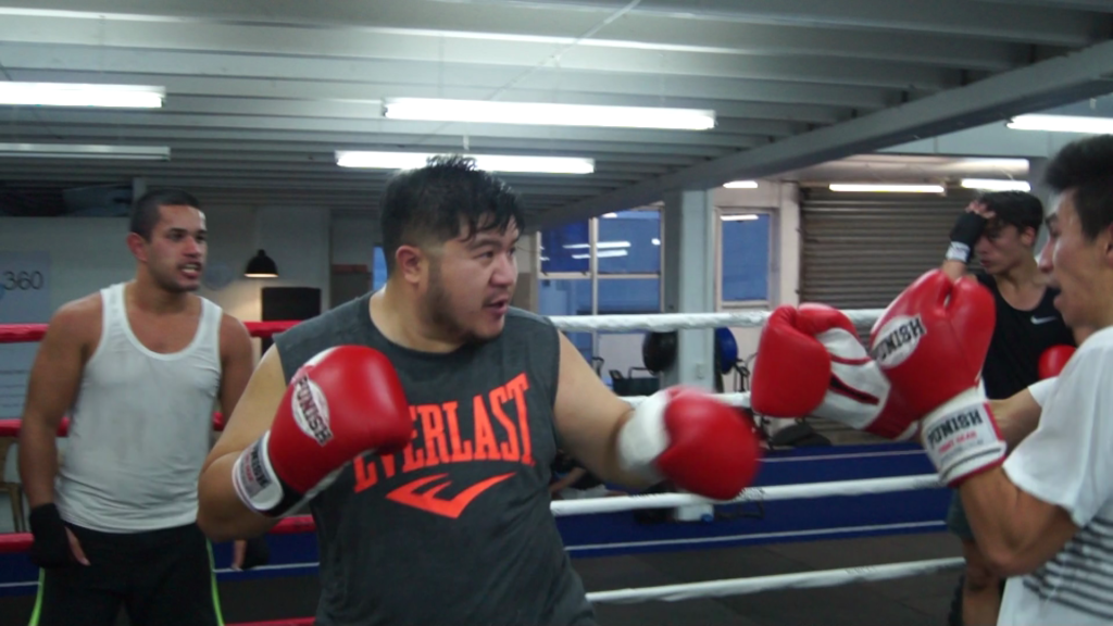 boxing new zealand sparring